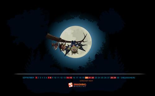 World Bat Night